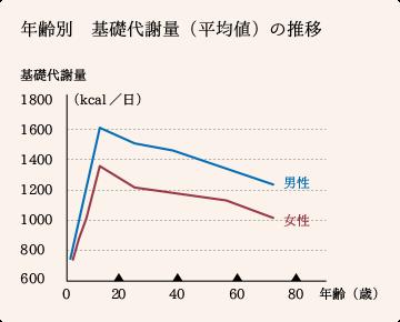 年齢別の基礎代謝量の平均値推移